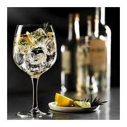 Verre à Gin TonicStolzle - carton de 6 verres