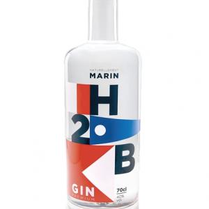 Gin H2B - Gin de Bretagne
